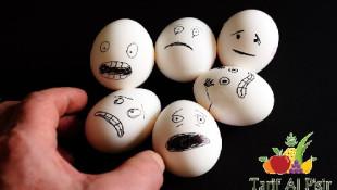 Yumurta Saklama Yöntemi